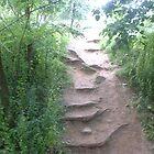 The Path Not Taken by Dori920