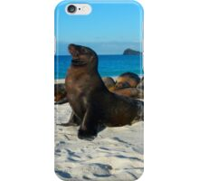 Sea Lions of Galapagos iPhone Case/Skin