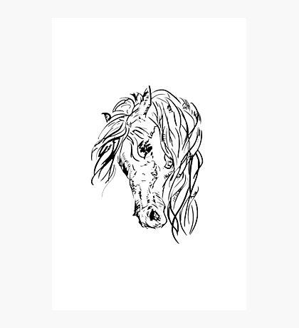 Portrait of a Horse Photographic Print