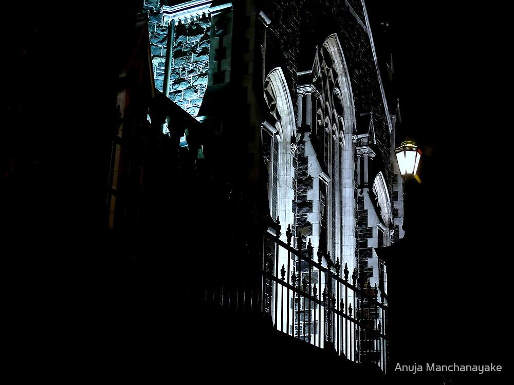 HIstoric Knox Church, Dunedin, NZ. by Anuja Manchanayake