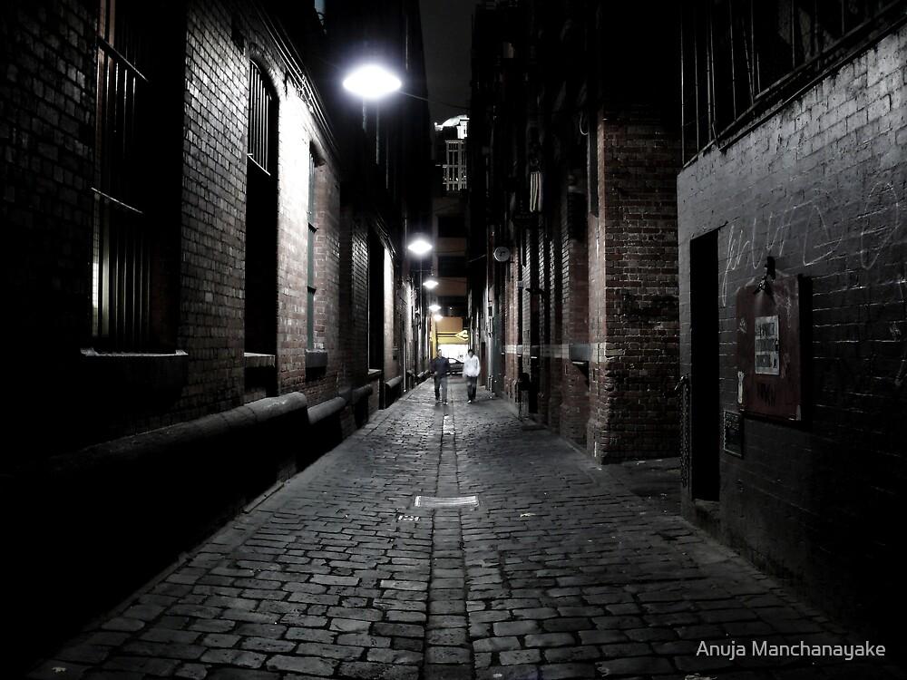 Niagara Lane, CBD Melbourne by Anuja Manchanayake