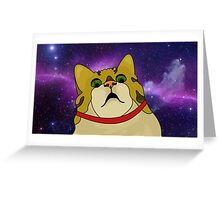 Surprised Cat Greeting Card