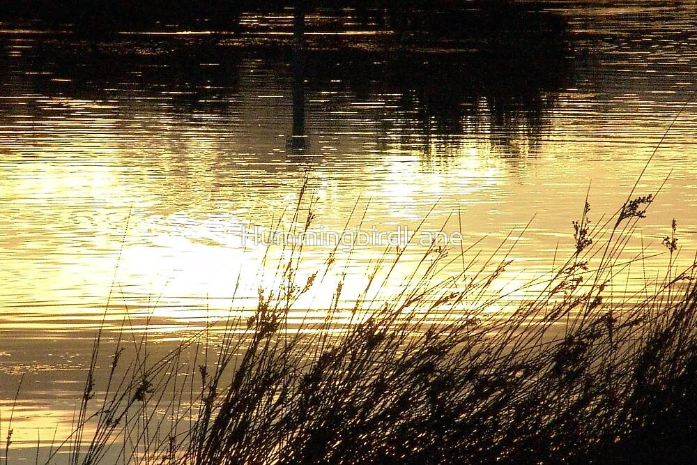 Torquay Lagoon Sunset by HummingbirdLane