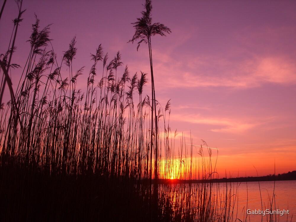 Winter Sunset by GabbySunlight