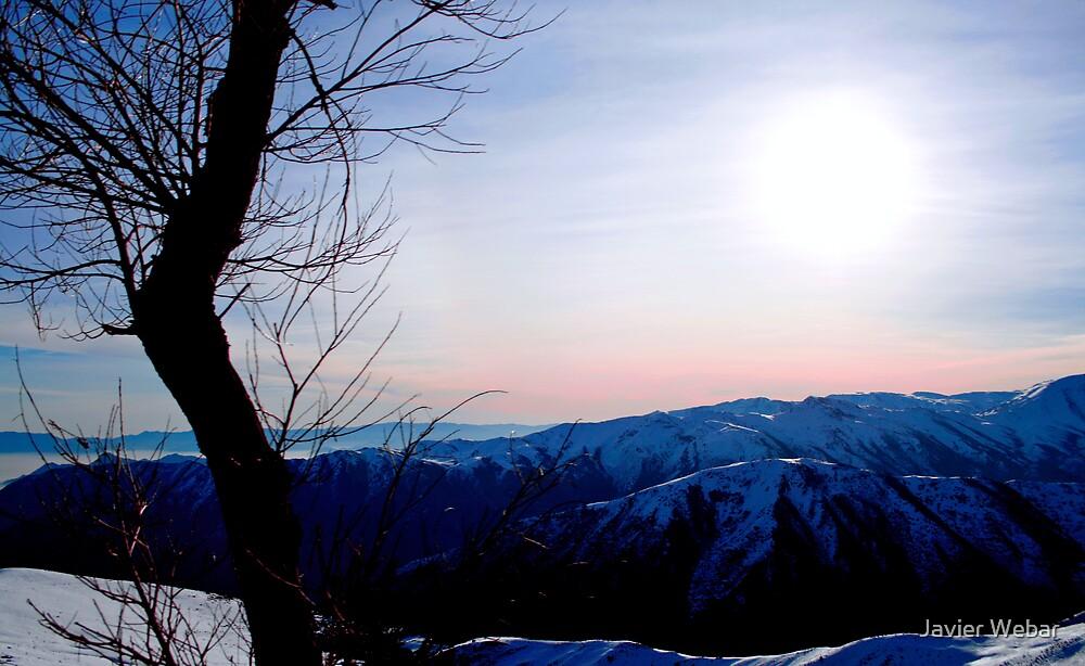 Cold Breeze by Javier Webar