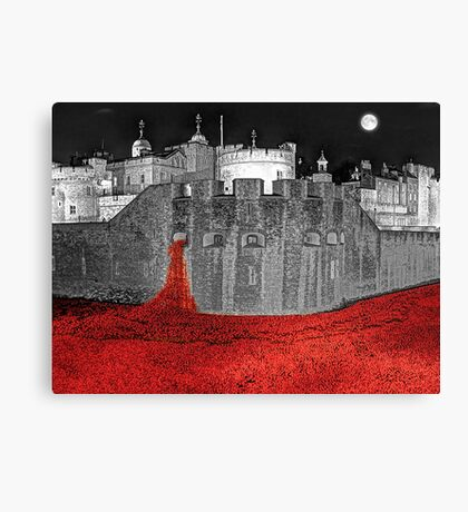 Poppies By Moonlight. Canvas Print