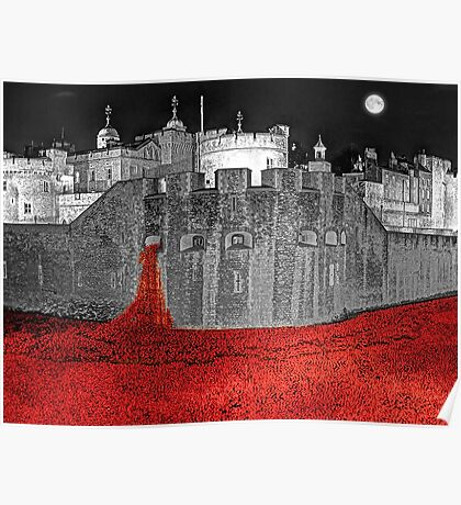 Poppies By Moonlight. Poster