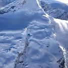 Mountainous Beauty by Lindsay Davenport