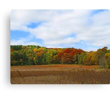 Beautiful Autumn Landscape Trees and Field Canvas Print