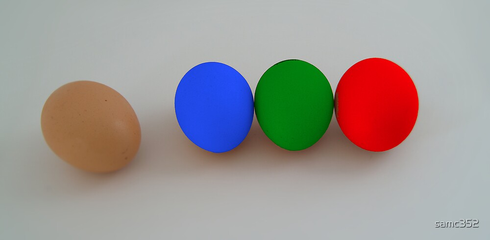 Diversity - Colorful Eggs  by samc352
