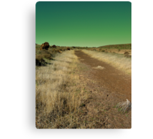 Road to Damascus Canvas Print