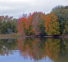 Reflections Of Fall by Martha Medford