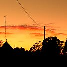 West Wyalong Dawn by K.D. Hemi