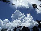 Clouds by John Douglas