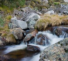 Mountain Stream IV by samg