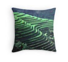 The Dragon's Backbone   Throw Pillow