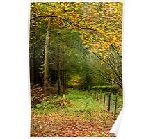 Autumn in Whinfell Forest Poster