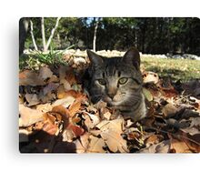 Playing in Leaves Canvas Print