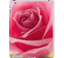Pink Rose Petals iPad Case/Skin