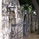 Alamo by EmmaLeigh