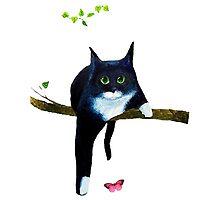 Cute Tuxedo Cat by timelessfancy