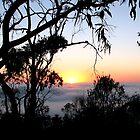 Sunrise - Mt Barker Summit - Adelaide Hills by Leeo