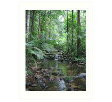 Waterfall - Mossman Gorge Art Print