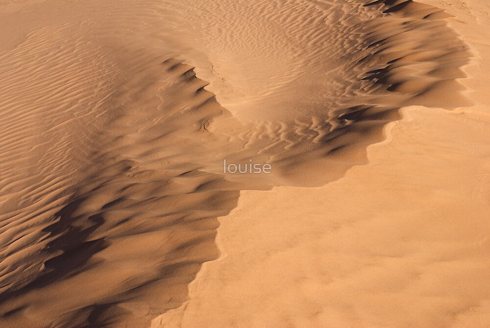 DRIFTING SAND by louise
