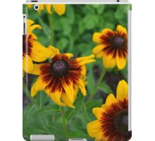 Fourth of July Flowers iPad Case/Skin