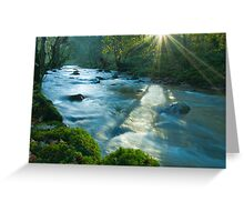 Sun Dappled River Lyvennet Greeting Card