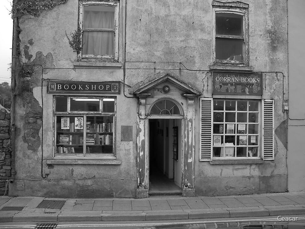 Celtic Bookshop by Ceasar