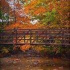 autumn bridge by Tgarlick