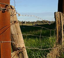 Fenced out by Gnangarra