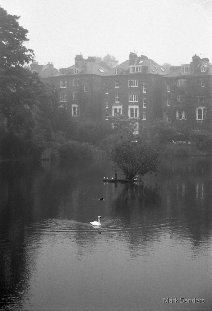 Hampstead Pond by Mark Sanders