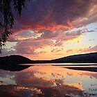 sunset @ the enchanted willow by Tgarlick