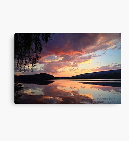 sunset @ the enchanted willow Canvas Print