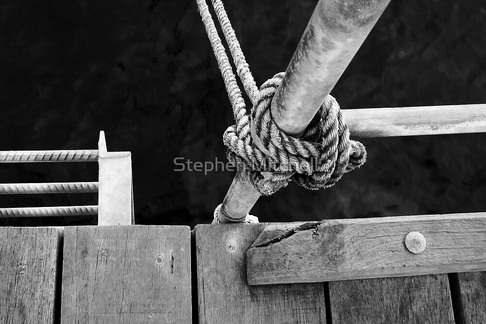 Knotted Rope by Stephen Mitchell