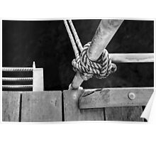 Knotted Rope Poster