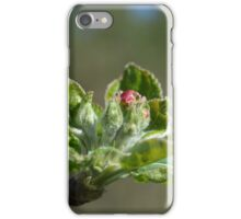 Apple tree blossom iPhone Case/Skin