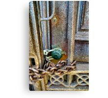 Locked out or Locked in Canvas Print
