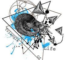 Triangle of life by dekRa