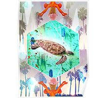 Turtle fly Poster