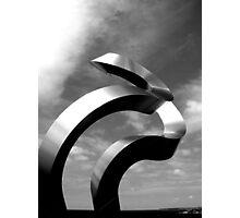 Sculptures by the Sea, Bondi Beach, Sydney 2006 Photographic Print