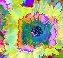 Psychodelic Flower Power by Polly Peacock