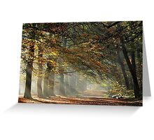 Going out on a bright November morning Greeting Card