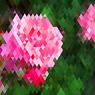 Pink Roses in Anzures 1 Abstract Triangles 2 by Christopher Johnson