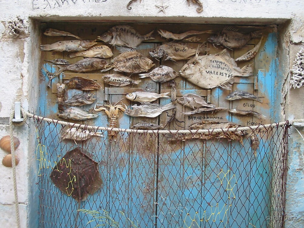 fish door by sarahcro123