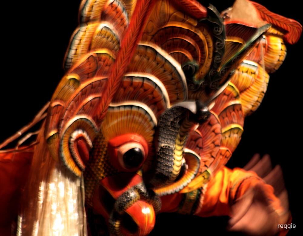 Sri Lankan Devil Dancer by reggie