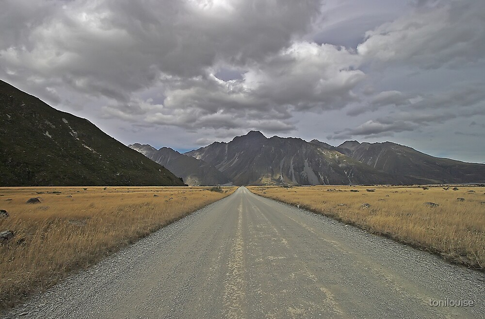Mt Cook National Park #2 by tonilouise