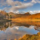 Blea Tarn Lake District by Trevor Kersley